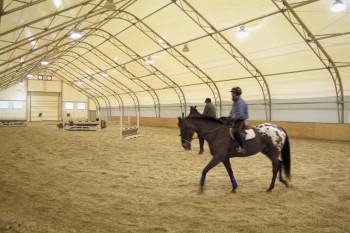 Строительство конных манежей. Конно-спортивные комплексы.Конные манежи.